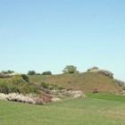 Hügel mit Hecken