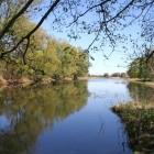 Nebenarm der Oder
