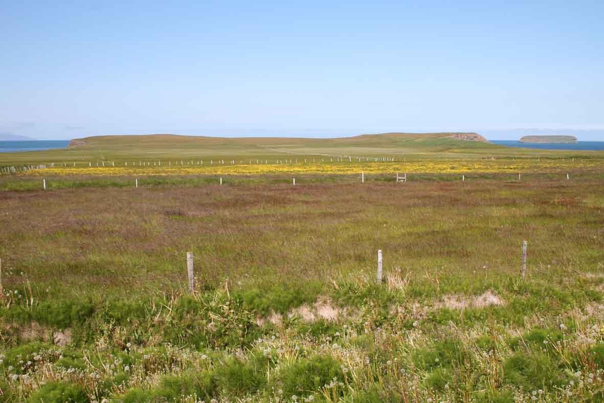 Landschaft bei Husavik