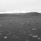 Schwarz-Weiß-Foto
