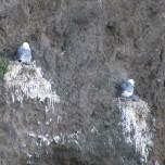 Auf Fels gebaut