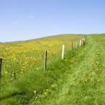 Wanderweg I