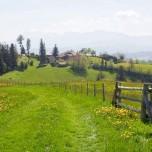 Wanderweg II