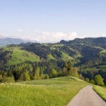 Wanderweg VI