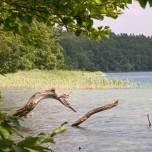Ufer II