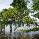 Ufer VI