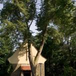 Kirche von Neuglobsow