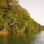 Ufer am Abend III