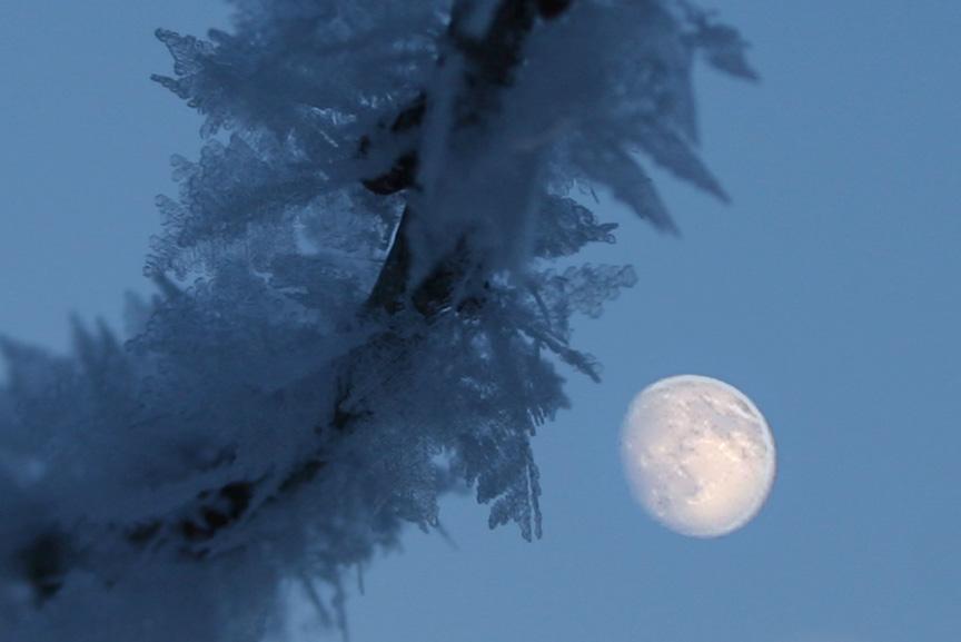 Magische blaue Stunde bei Kanin