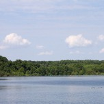 Unbebautes Ufer des Schwielochsees