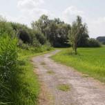Radweg rund um den Schwielochsee