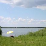 Sonnenschirm am Ufer mit Schubkarre
