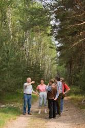 Erklärungen im Wald