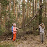 Entdeckung im Wald