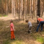 Beräumung des Waldweges