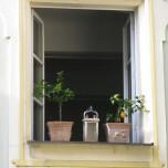 Fensterschmuck