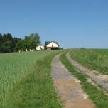 Wanderweg auf dem Donausteig