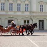 Pferdedroschke in Weimar