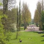 Blick von der Sternbrücke auf den Park an der Ilm