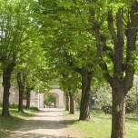 Zur Villa Haar