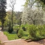 Park an der Villa Haar