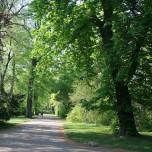 Weg im Park an der Ilm