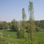 Park an der Ilm