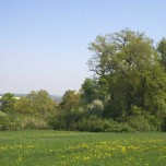 Blick in Weimarer Land