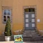 Dekoration am Schloss Belvedere