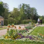 Blumengarten in Park und Schloss Belvedere
