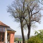 Blick ins Weimarer Land von Belvedere aus