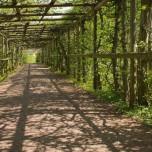 Laubengang im Park Belvedere