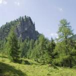 Felsen in Großarl