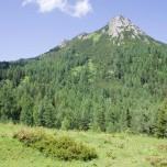 Berg in Großarl