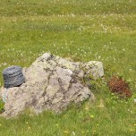 Vergessene Utensilien auf einer Weide in den Alpen