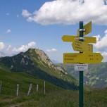 Wanderwege auf der Filzmooshöhe