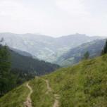 Wanderweg oberhalb der Loosbühelalm