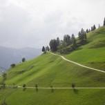 Geschwungener Weg am Hang in den Alpen
