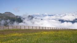 Ausblick in die Berge über Großarl