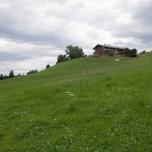 Jausenstation Hollenau oberhalb von Going