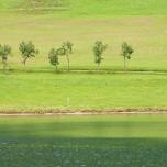 Grüne Wiese, grüner See