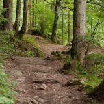 Wanderweg um den Hintersteinersee