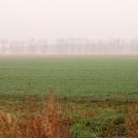 Landschaft bei Klaistow