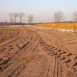 Sandwege am herbstlichen Spargelfeld