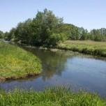 Der Fluss Nieplitz zwischen Reesdorf und Beelitz