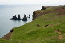 Vogelfelsen Reynisfjall mit Blick auf die Felsengruppe Reynisdrangar