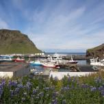 Blick auf den Hafen von Heimaey auf den Westmännerinseln