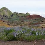 Auf dem Lavafeld des Eldfell auf den Westmännerinseln