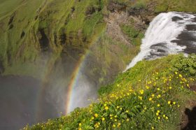 Wasserfall Skógafoss auf Island