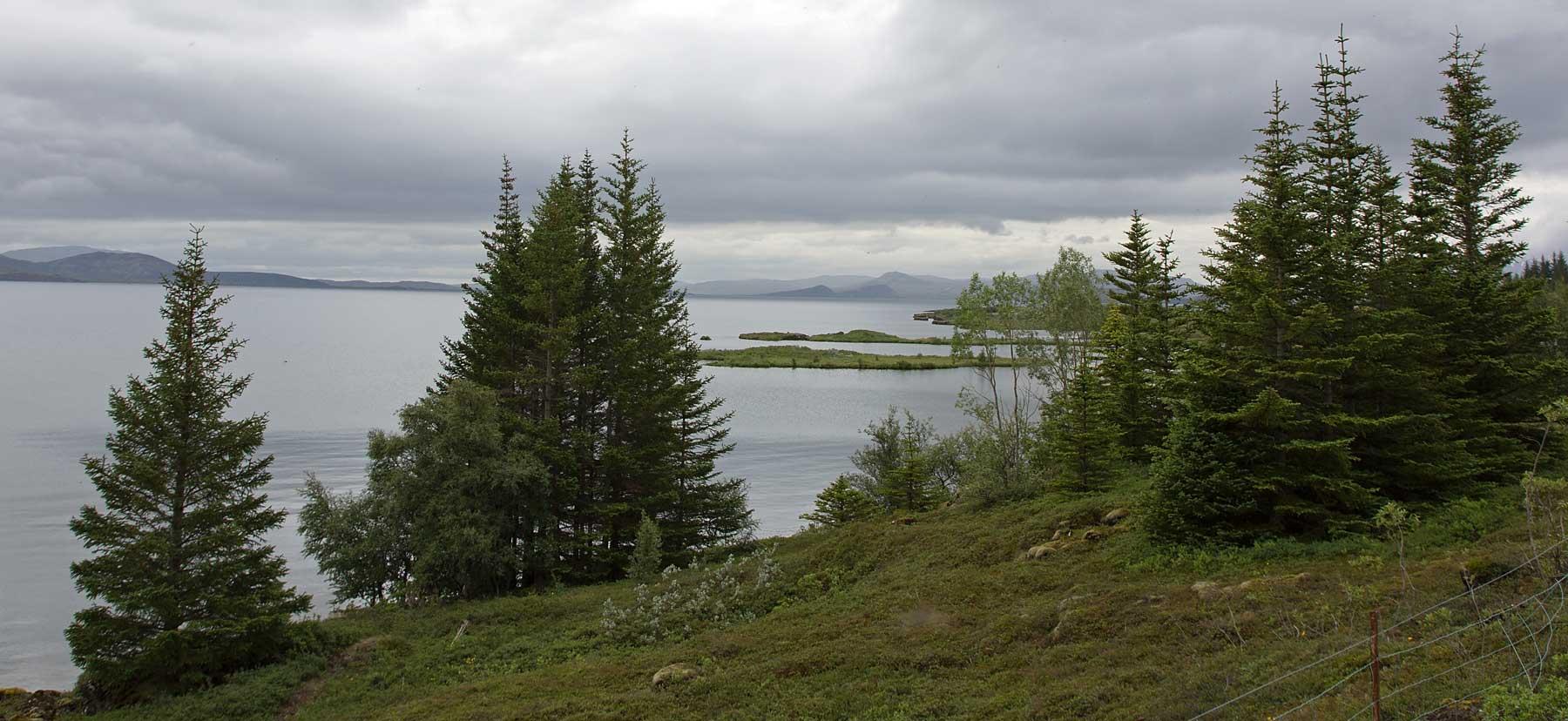 Þingvallavatn II